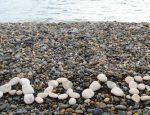 Лучшие пляжи Адлера – выбираем место для комфортного отдыха